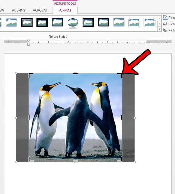 how to crop a picture in word 2013