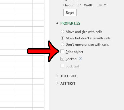 prevent picture from printing in excel 2013