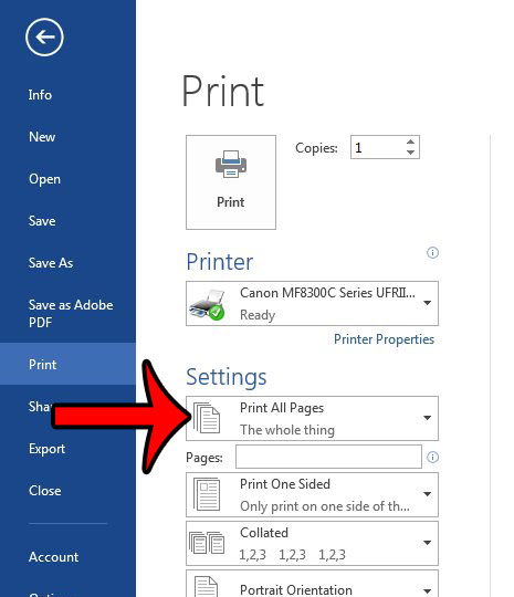 click the print all pages button