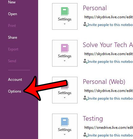 open onenote options