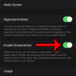 how to enable screenshots on the Apple Watch