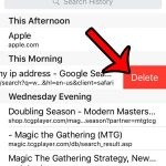 delete a page from safari history on iphone