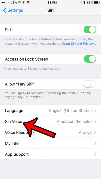 select a new voice and gender for Siri