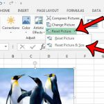 how to reset a picture to its original size in excel 2013