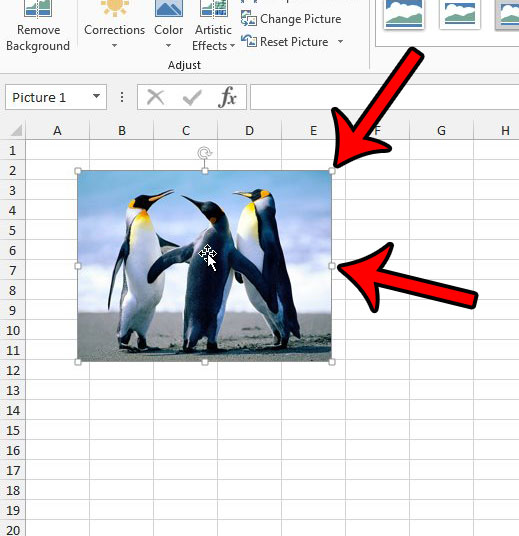 resize a picture in excel 2013 with the handles