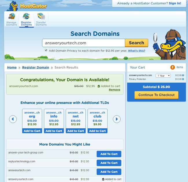 select the domain name to add it to the cart