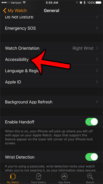open the watch accessibility menu