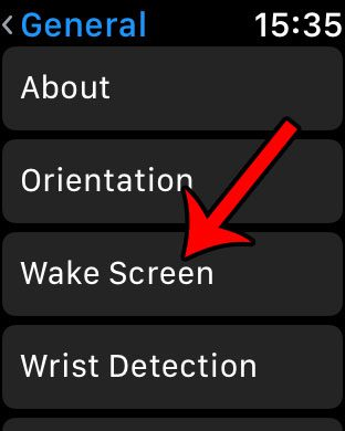 how to keep apple watch screen lit up