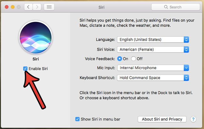 how to turn off siri on a macbook air