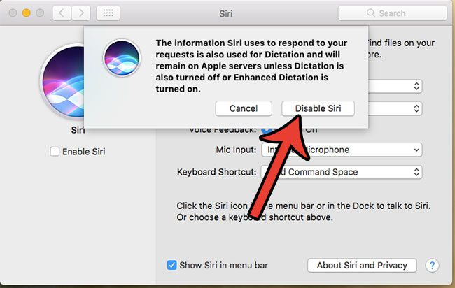 how to disable siri on a macbook air