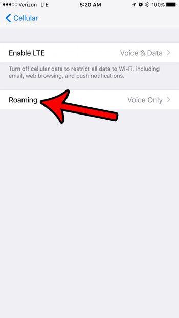 how to check roaming settings on iphone