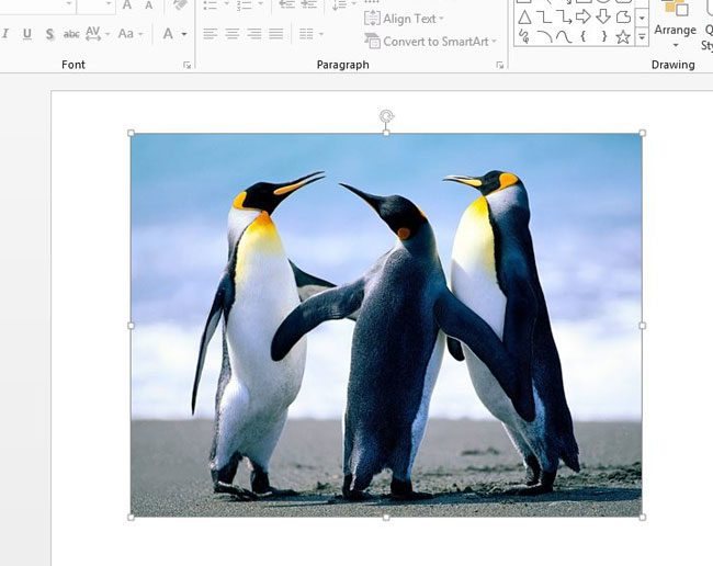 how to put a border around a picture in powerpoint 2013