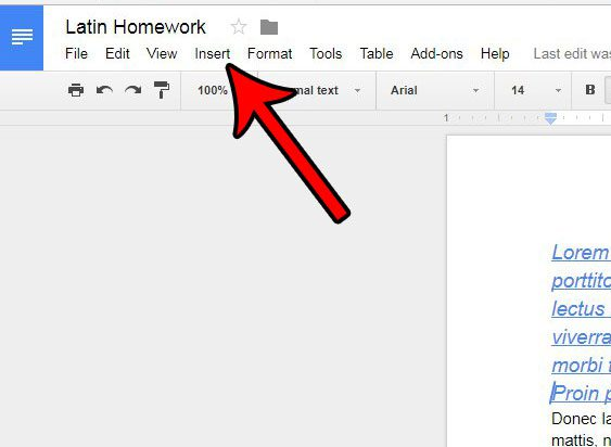 open the google docs insert menu