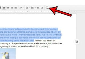 How to Clear Formatting from a Selection in Google Docs