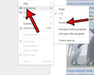 How to Double Space a Document in Google Docs