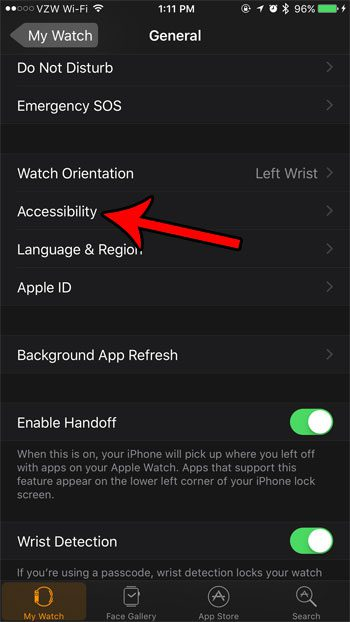 apple watch accessibility menu
