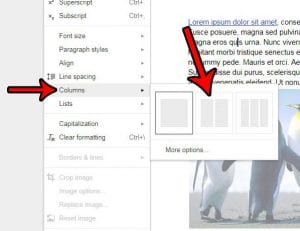 How to Add a Second Column to a Document in Google Docs
