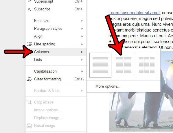 How To Add A Second Column To A Document In Google Docs Solve Your - Google docs columns