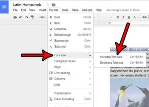 How to Increase the Font Size for an Entire Document in Google Docs