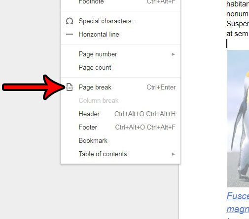 how to add a page break in google docs