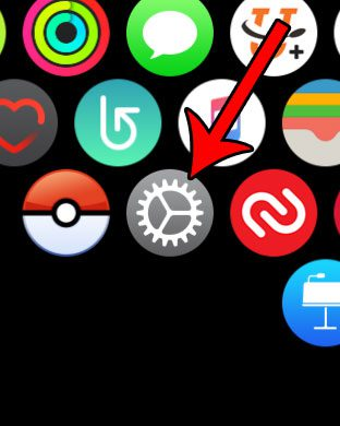 apple watch settings menu