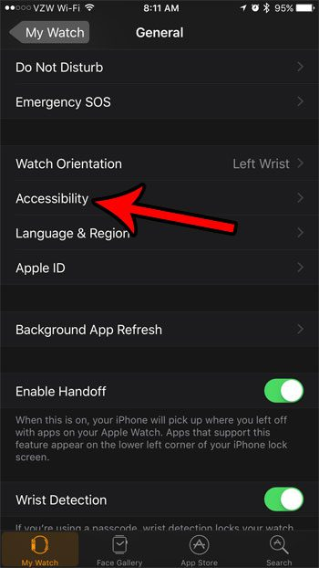 apple watch acccessibility settings