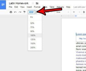 how zoom in zoom out google docs