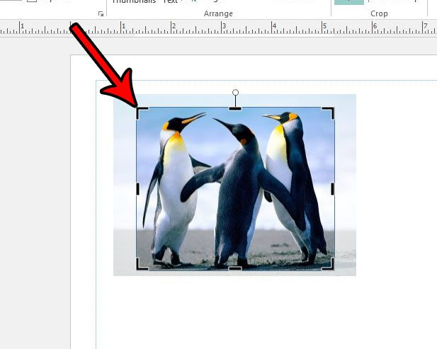 how to crop a picture in publisher 2013