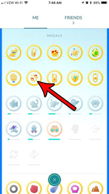 how to view number of battles won in pokemon go