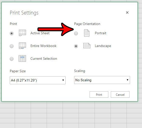 how to switch page orientation in excel online