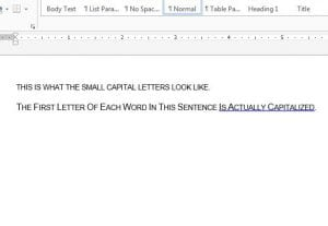 small caps in word example