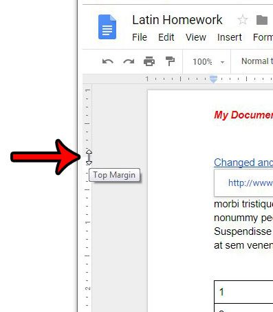 How to Reduce Header Size in Google Docs - Solve Your Tech