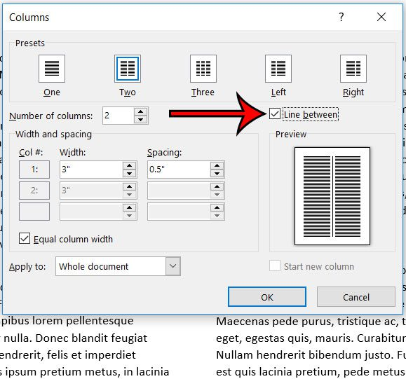 how to add column dividers in word 365