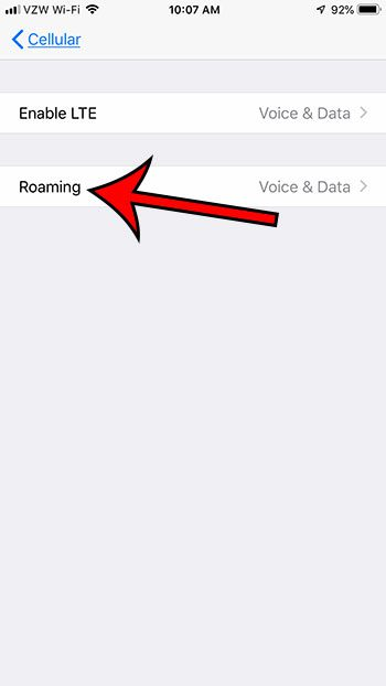 select the roaming option