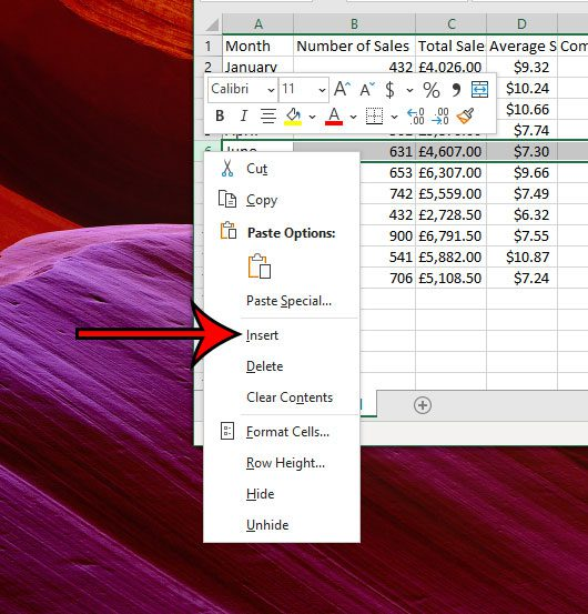 how to add a single row in Excel 2016