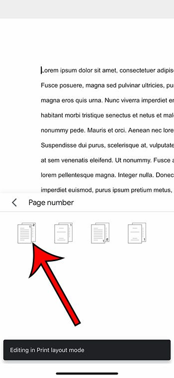 how to add page numbers in the Google Docs iPhone app