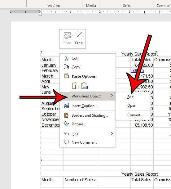 how to edit an Excel object in a Word document