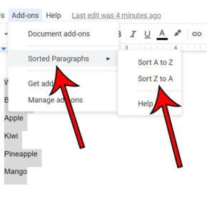 how to alphabetize a list in Google Docs