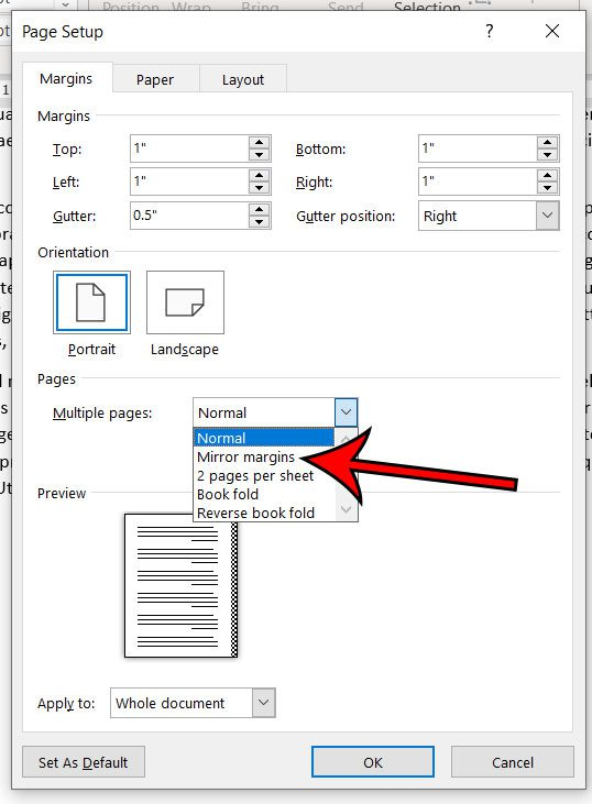 how to use mirror margins in Microsoft Word