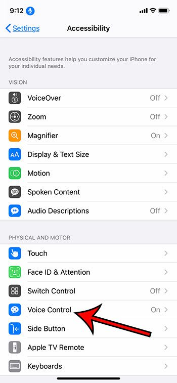 select the Voice Control option
