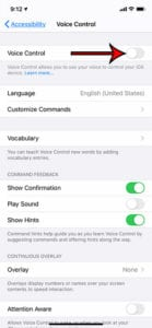 how to disable voice control on an iPhone 11