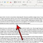 how to add a solid line in Microsoft Word